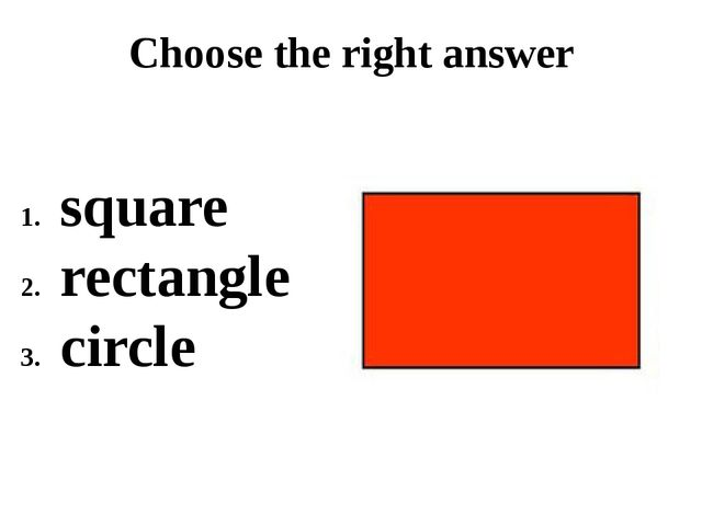 Choose the right answer square rectangle circle