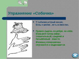 Упражнение «Собачка» У собачки острый носик, Есть и шейка , есть и хвостик. П