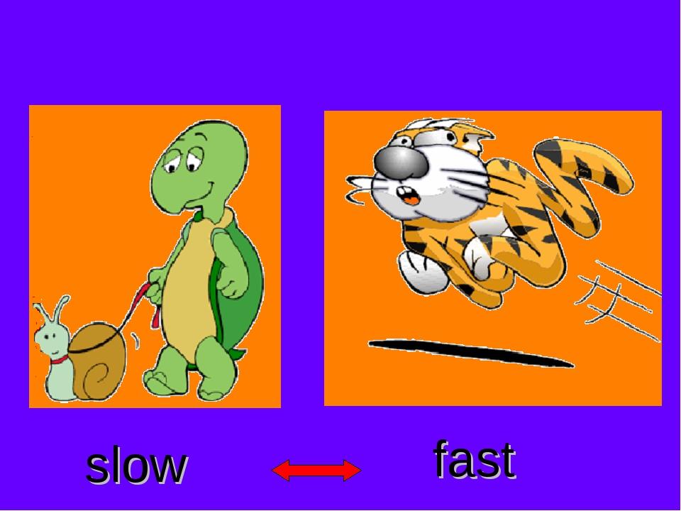 slow fast