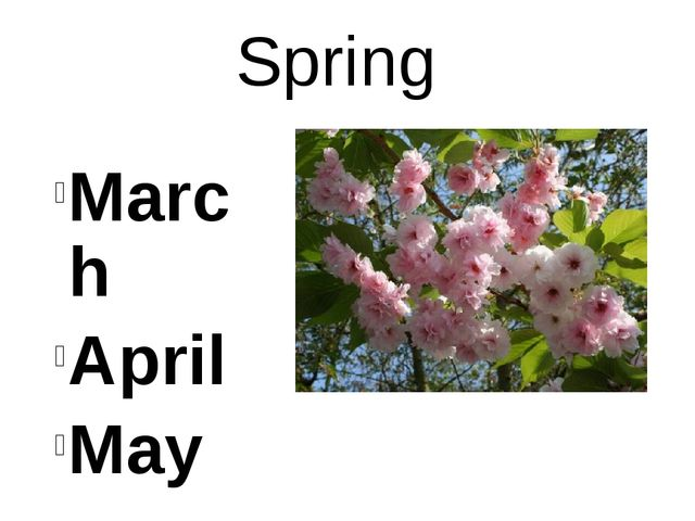 Spring March April May