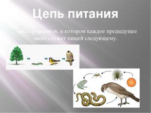 Цепь питания -ряд организмов, в котором каждое предыдущее звено служит пищей