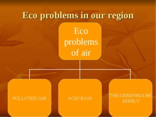 Eco problems in our region