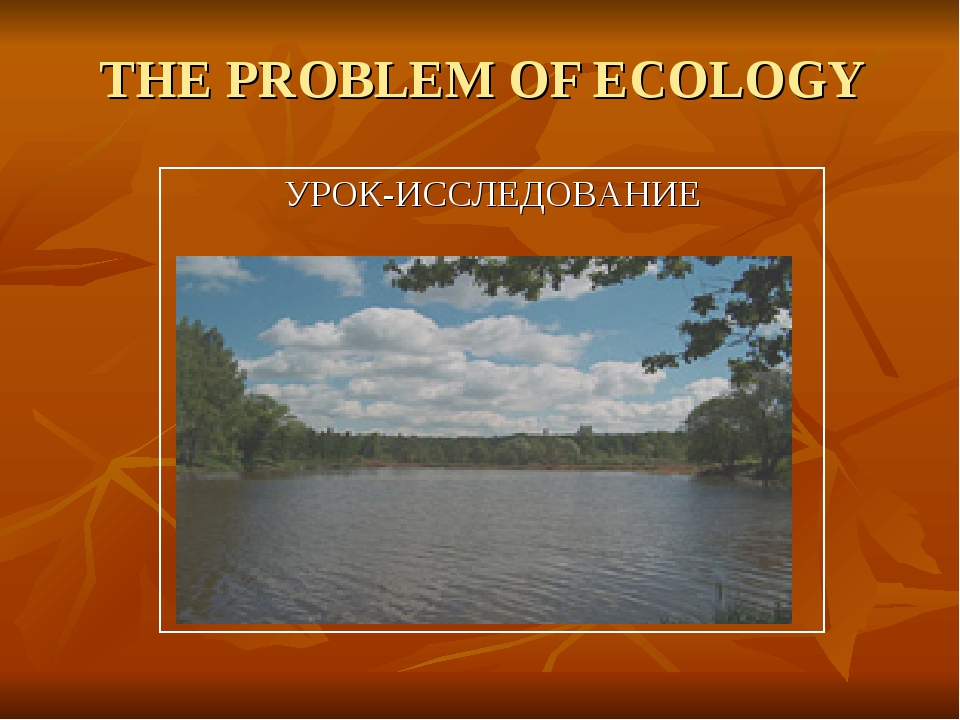 THE PROBLEM OF ECOLOGY