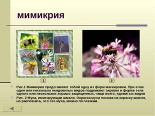 мимикрия Рис.1 Мимикрия представляет собой одну из форм маскировки. При этом