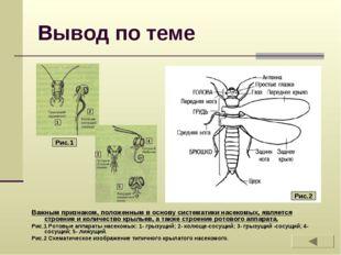 Вывод по теме Важным признаком, положенным в основу систематики насекомых, яв