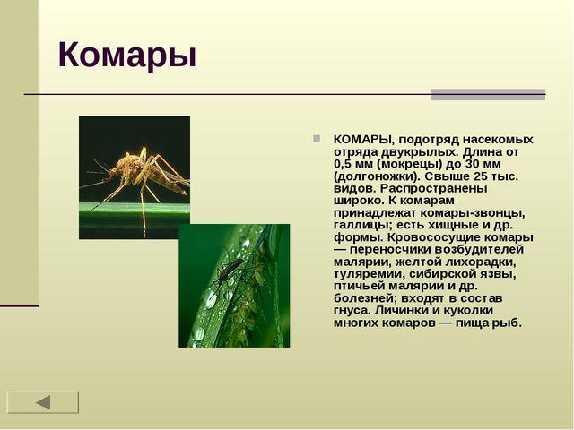 Комары КОМАРЫ, подотряд насекомых отряда двукрылых. Длина от 0,5 мм (мокрецы)...