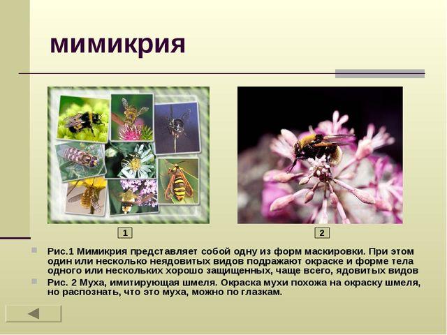 мимикрия Рис.1 Мимикрия представляет собой одну из форм маскировки. При этом...