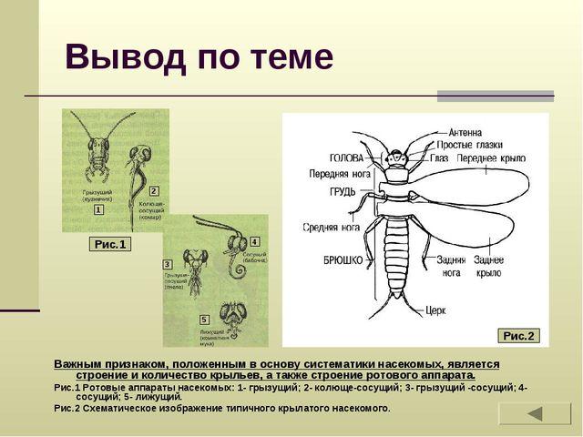 Вывод по теме Важным признаком, положенным в основу систематики насекомых, яв...
