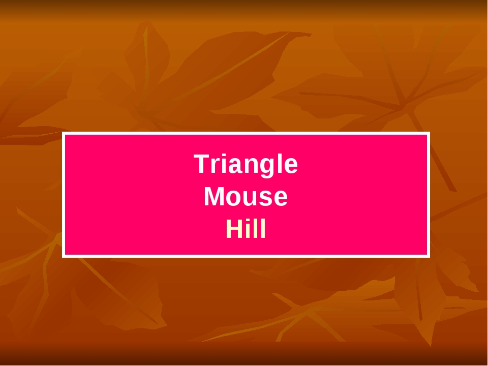 Triangle Mouse Hill