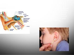 Уши – орган слуха. Слух - это способность воспринимать звуковые волны. Уши на