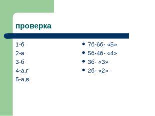 проверка 1-б 2-а 3-б 4-а,г 5-а,в 7б-6б- «5» 5б-4б- «4» 3б- «3» 2б- «2»