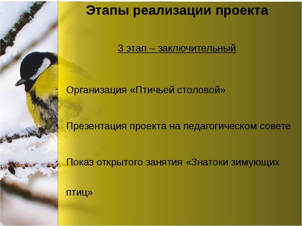 Этапы реализации проекта Организация «Птичьей столовой» Презентация проекта н...