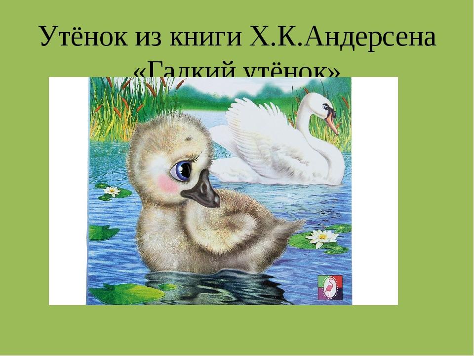 Утёнок из книги Х.К.Андерсена «Гадкий утёнок»