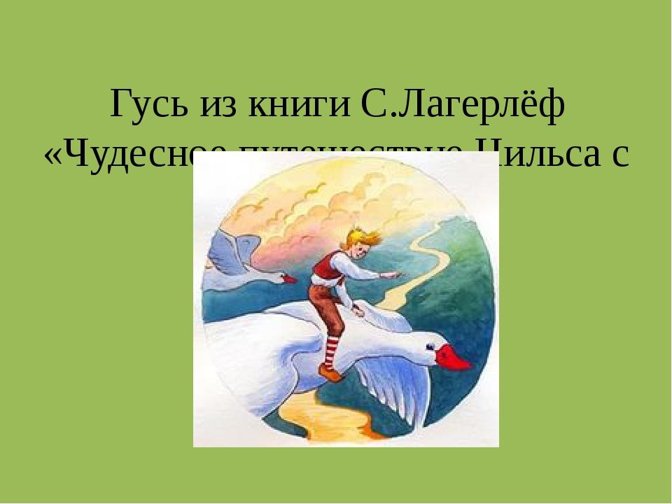 Гусь из книги С.Лагерлёф «Чудесное путешествие Нильса с дикими гусями»