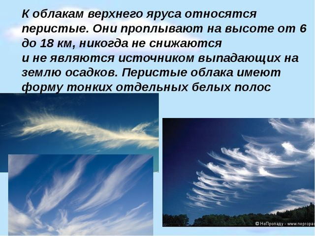 К облакам верхнего яруса относятся перистые. Они проплывают на высоте от 6 до...