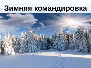 Зимняя командировка