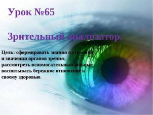 Урок №65 Зрительный анализатор. Цель: сформировать знания о строении и значен