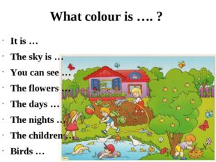What colour is …. ? It is … The sky is … You can see … The flowers … The days