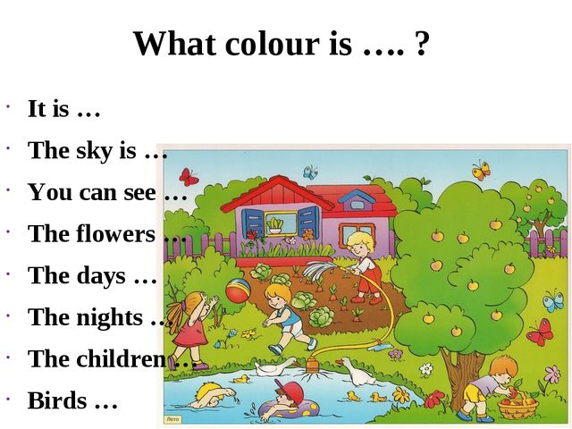 What colour is …. ? It is … The sky is … You can see … The flowers … The days...