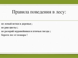 Правила поведения в лесу: не ломай ветки и деревья ; не рви цветы ; не разоря