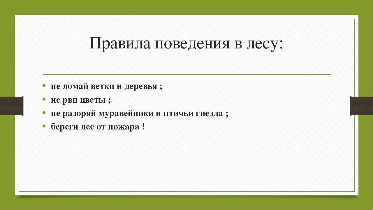 Правила поведения в лесу: не ломай ветки и деревья ; не рви цветы ; не разоря...