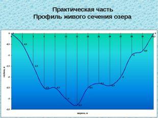 Практическая часть Профиль живого сечения озера