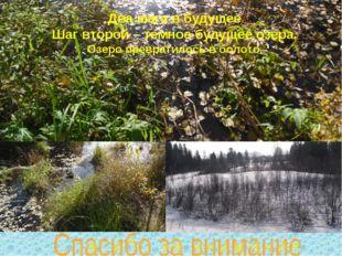 Два шага в будущее Шаг второй – темное будущее озера. Озеро превратилось в бо