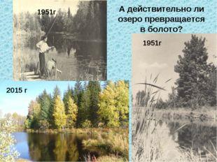 1951г 2015 г 1951г А действительно ли озеро превращается в болото?
