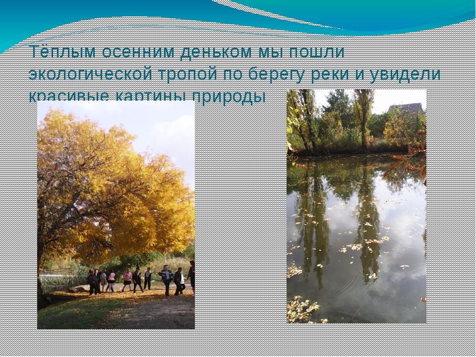 Тёплым осенним деньком мы пошли экологической тропой по берегу реки и увидели...