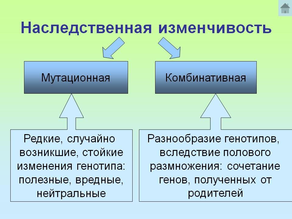 hello_html_m729b65c0.jpg
