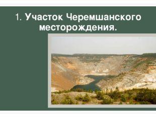 1. Участок Черемшанского месторождения.