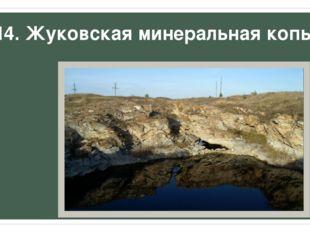 14. Жуковская минеральная копь.