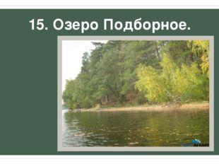 15. Озеро Подборное.