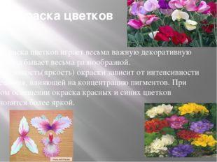 Окраска цветков Окраска цветков играет весьма важную декоративную роль. Она б