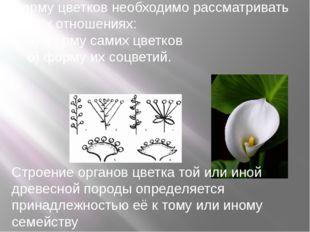 Форму цветков необходимо рассматривать в двух отношениях: а) форму самих цвет