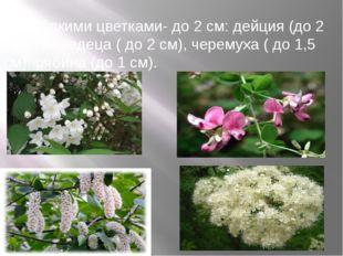 г) с мелкими цветками- до 2 см: дейция (до 2 см), леспедеца ( до 2 см), черем