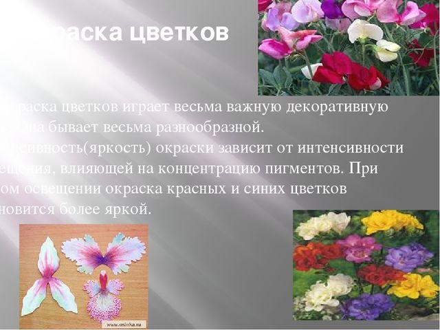 Окраска цветков Окраска цветков играет весьма важную декоративную роль. Она б...