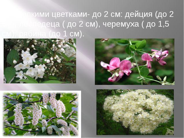г) с мелкими цветками- до 2 см: дейция (до 2 см), леспедеца ( до 2 см), черем...