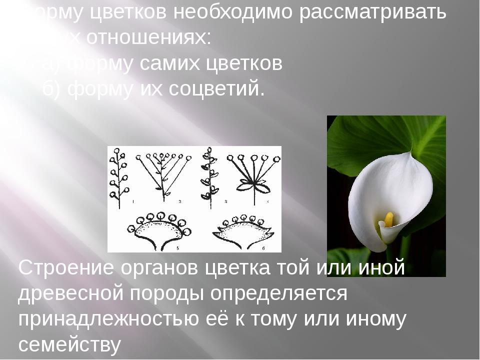 Форму цветков необходимо рассматривать в двух отношениях: а) форму самих цвет...