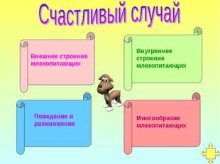 Внешнее строение млекопитающих Внутреннее строение млекопитающих Поведение и