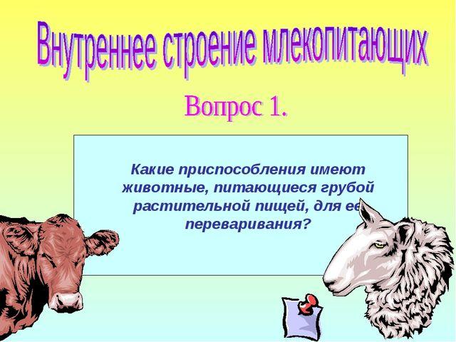 Какие приспособления имеют животные, питающиеся грубой растительной пищей, дл...