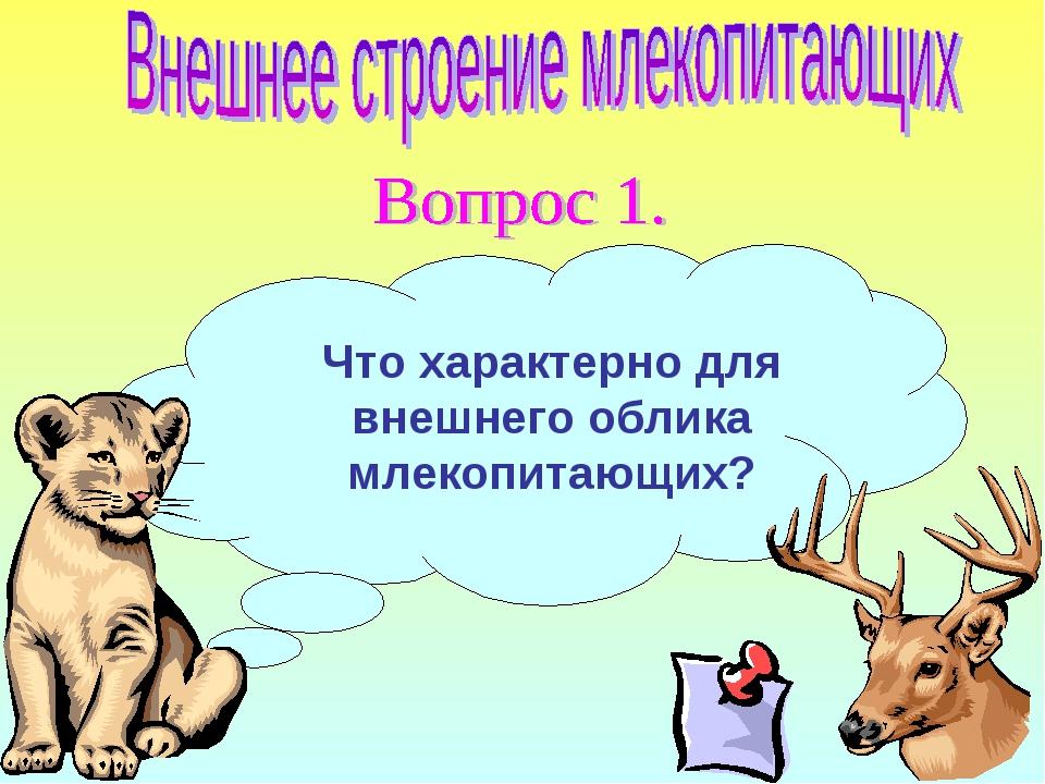 Что характерно для внешнего облика млекопитающих?