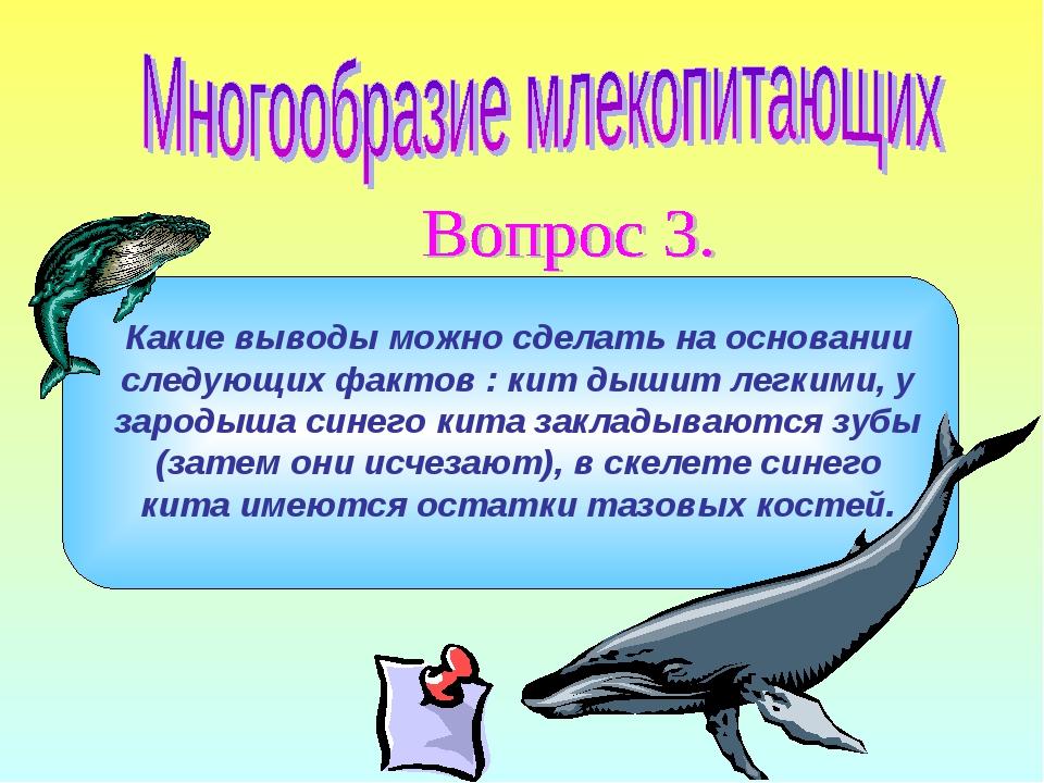 Какие выводы можно сделать на основании следующих фактов : кит дышит легкими,...