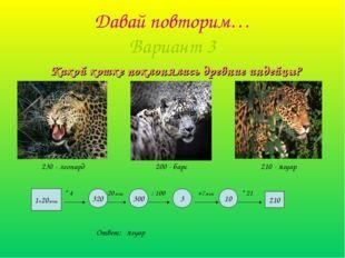 Давай повторим… Вариант 3 Какой кошке поклонялись древние индейцы? 1ч20мин *