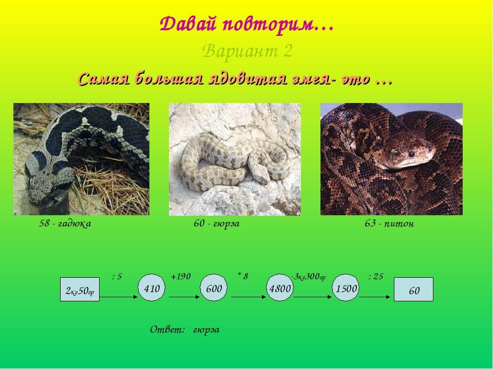 Давай повторим… Вариант 2 Самая большая ядовитая змея- это … 60 600 4800 1500...