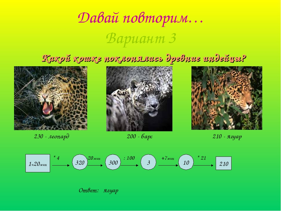 Давай повторим… Вариант 3 Какой кошке поклонялись древние индейцы? 1ч20мин *...