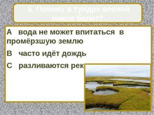 A вода не может впитаться в промёрзшую землю B часто идёт дождь C разливаются