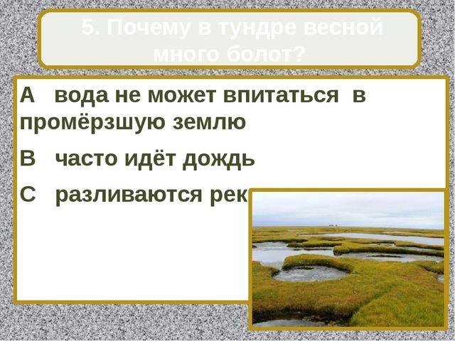 A вода не может впитаться в промёрзшую землю B часто идёт дождь C разливаются...