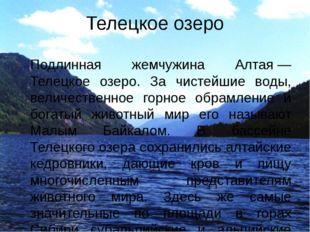 Телецкое озеро Подлинная жемчужина Алтая— Телецкое озеро. За чистейшие воды,