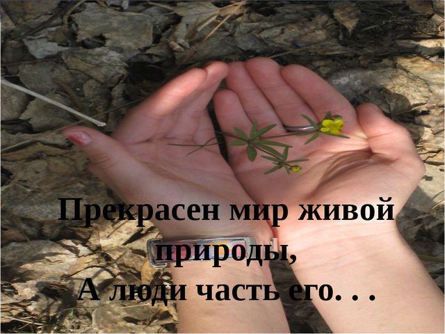 Прекрасен мир живой природы, А люди часть его. . .